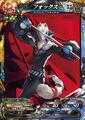 Fox-P5-Card-213x300.jpg