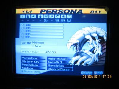 IMG 4313