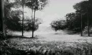 Monochrome Forest SMTIV