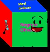 Maxi object