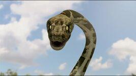 Mega Python