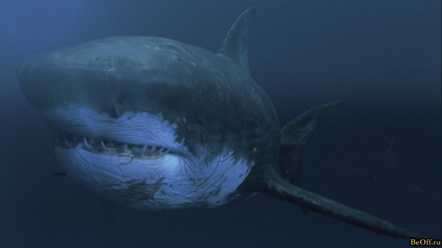 File:Mega Shark.jpg