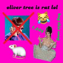 Oliver 3 is rat