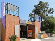 800px-Melbourne Zoo, Victoria, Australia -22Jan2011