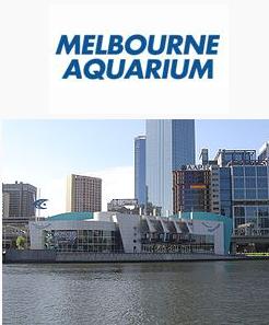 File:Melbourne Aquarium.png
