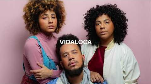 Tuyo - Vidaloca (Áudio Oficial)