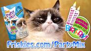 Friskies grumpy cat