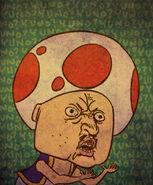 Y u no toad