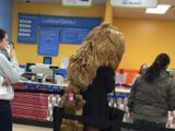The People of Walmart - Image Gallery
