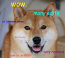 Doge - Image Gallery