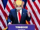 Yungoos Trump