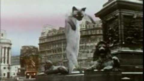 Monty Python Created Loongcat