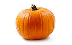 Yogurt pumpkin img2