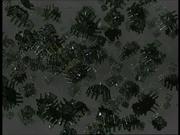 Nanosonde - Scorpion II