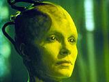 Regina Borg