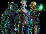 Borg (Primäruniversum)