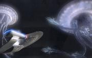 Enterprise Sternenquallen