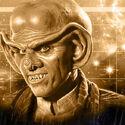 Quark Profil