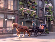 Horse and carriage in New Orleans (2372)