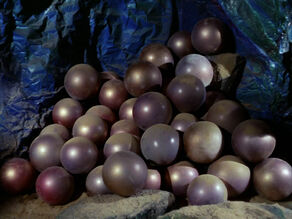 Horta eggs