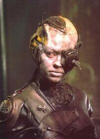 Borg7of9