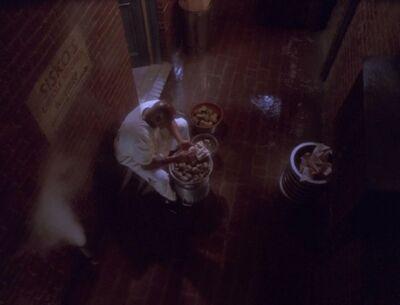 Sisko putzt Muscheln