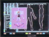 Anatomia suliban-0149