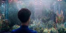 Сад на кораблі (Star Trek Discovery S01E03)