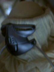 Maskiertes Mitglied des Konzils 2