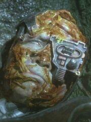 Borg-Drohne infiziert von Spezies 8472 (2373)