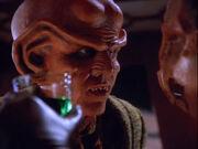 Fallit Kot threatens Quark