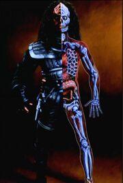 Klingonische Anatomie