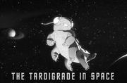 The Tardigrade in Space