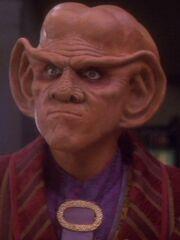 Quark 2374