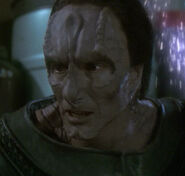 Cardassian resistance rebel