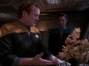 Miles sieht sich Keikos vertrocknete Pflanzen an
