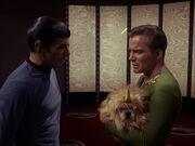 Spock sorgt sich um Kirk