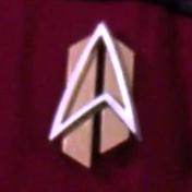 Starfleet combadge, 2390s