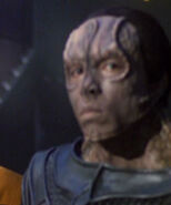 Holographic Cardassian 2 2377