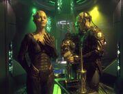 Borg-Königin überwacht die Extrahierung eines Kortikalknotens einer Drohne