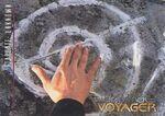 Star Trek Voyager Season Two Trading Card 124