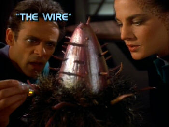 The Wire title card
