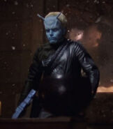 Kim Koscki, The Andorian Incident