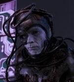 Borg compound guard