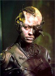 Seven-of-nine-as-Borg-seven-of-nine-11538147-303-423
