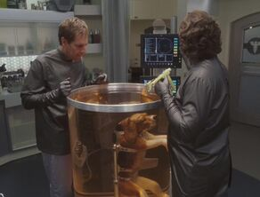 Porthos in surgery super-hydrated cs