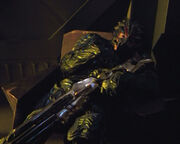Alpha-Hirogen in chair