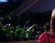 Enterprise-D plant 9, 2364