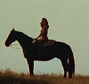 Antonia zu Pferd im Nexus