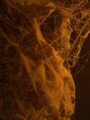 Vulkanische Mumie 5 2154